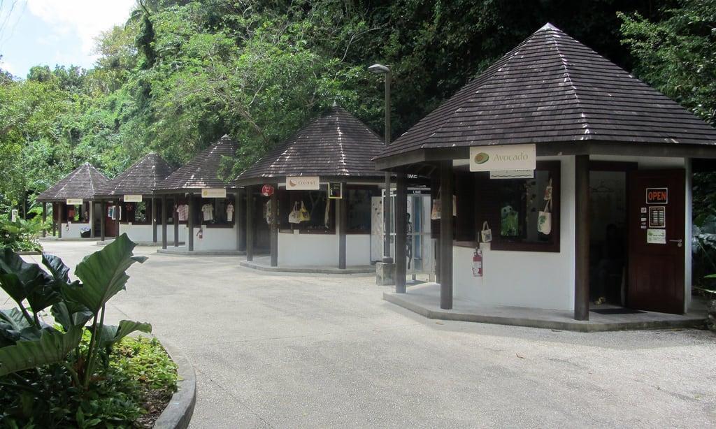 תמונה של Harrison Cave. travel vacation barbados caribbean cave harrisonscave